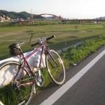 4月の自転車