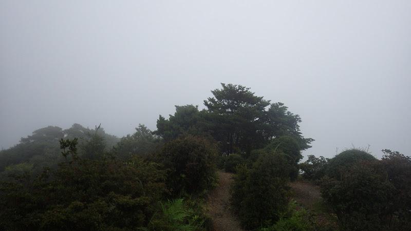 虎ヶ岳トレイルラン