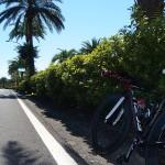 「Ironman70.3 Taiwan」への移動と宿泊