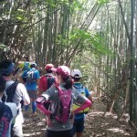 Second course exploring