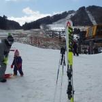 スキー開始