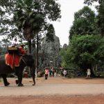 Ultra-Trail d'Angkor エントリィ